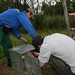 10. Akumuliatorius prijungiamas prie tvoros