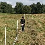 4. Vyniojant segti juostą prie kuolų