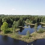 Dovilė Selickaitė. Kirkilų ežerėliai nuo stebėjimo bokšto