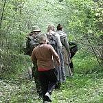 Dovilė Selickaitė. Miško tankmėje