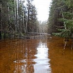 Renatas išsiliejusi upė
