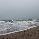 Tadas Petrikas. Nurimusi jūra
