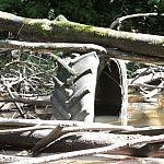 Upėja niekas neprapuola. Nuotraukos autorius Bertas Ulozevičius