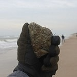 Akmenukas. Nuotraukos autorius T. Petrikas