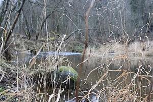 Lomenos upė. Nuotraukos autorė Dovilė Selickaitė