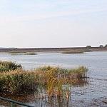 Giedrė Aleksandravičiūtė. Siemianuvkos ežeras