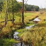 Giedrė Aleksandravičiūtė. Liutovnios upė