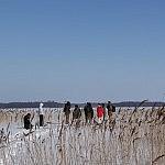 Nuotraukos autorius J. Ivanauskas Dysnykščio ežeras