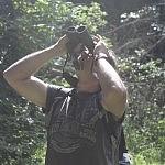 Padangėje sklando mažasis erelis rėksnys. Nuotraukos autorius Bertas Ulozevičius