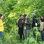 Konsiliumas Vilkų miške
