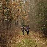 Miško keliuku eina pėdsekiai (Gintarės Žalkauskaitės nuotrauka)