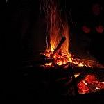 Ugnies šiluma (Gintarės Žalkauskaitės nuotrauka)
